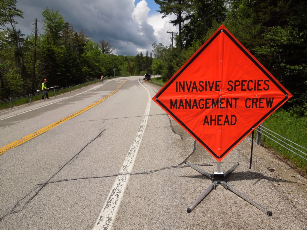 invasive species management crew ahead